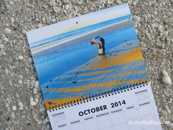 The Sanibel Stoop Calendar Is Here!