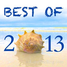 best-of-2013 seashells