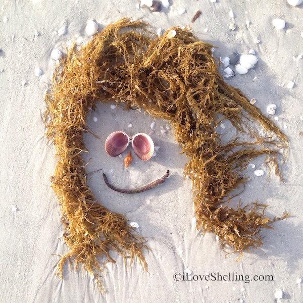 Warm Sandy Beach Wishes