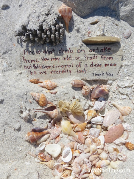 Sanibel Wishes and Memories
