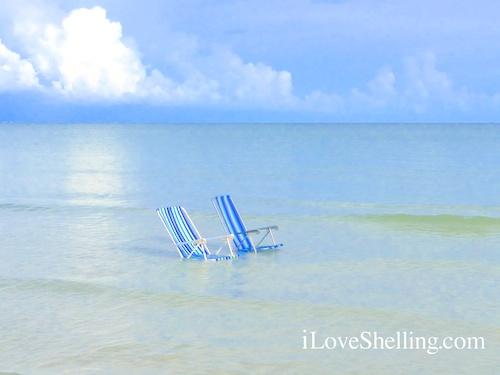 Summer Calm Low Tide