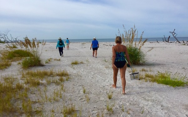 Successful Beach Combing Trip to Big Hickory Island