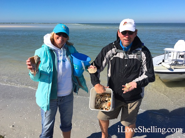 pam clark rambo shelling clearwater beach florida