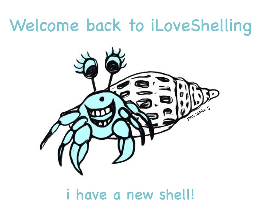Shelling Out A New Look For iLoveShelling