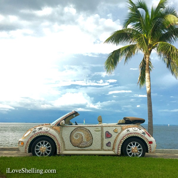 shell love bug vw seashell car