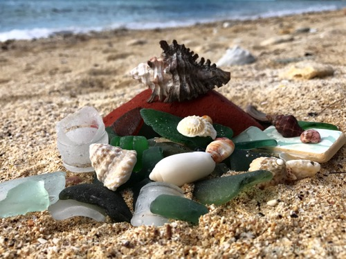 beach-combing-eluethera-seaglass-seashells-1