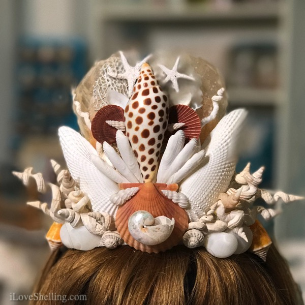 seashell shell crown tiara Pam Rambo junonia