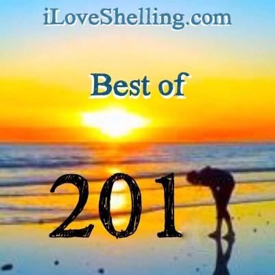 Best beachcombing 2017