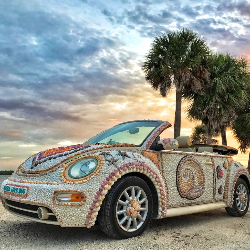 Petition To Bring Shell Love Bug Home