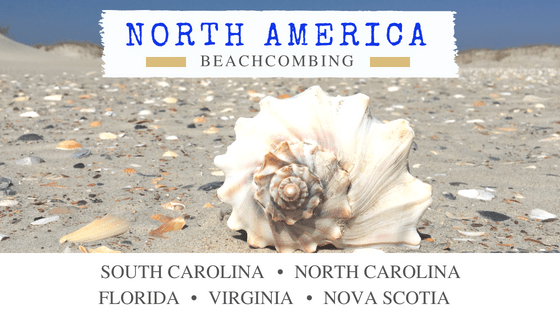 North America Beachcombing Destinations