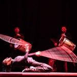 Che Malambo brengt passie, vurigheid en kwaliteit in een energieke theateravond
