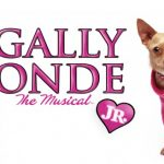 Auditieoproep: Legally Blonde