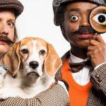 Theatergezelschap BonteHond maakt voorstelling WIEDEEDHET voor waarom-vragers
