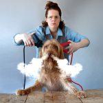 De hond die licht gaf, griezelkomedie voor 6 jaar en ouder