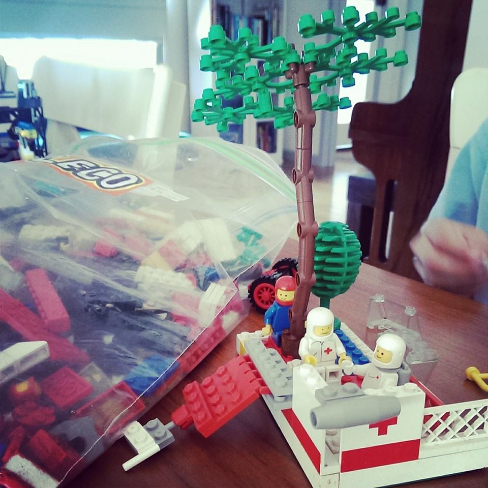 Erica found this old school bag of Lego for $5!!