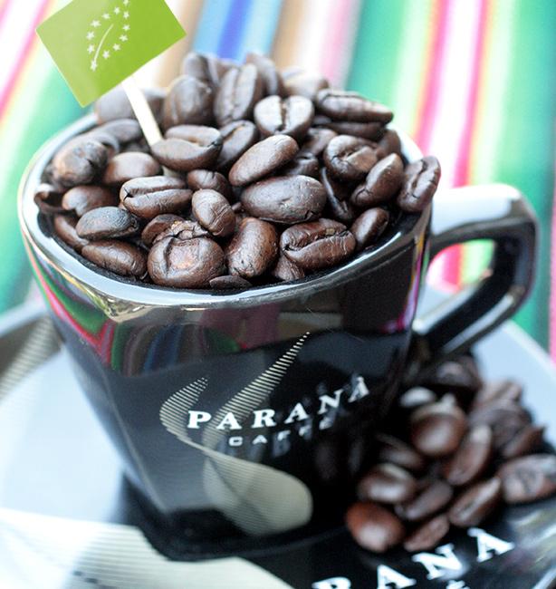 caffè biologico roma