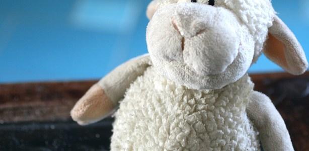 Invece di contare le pecore
