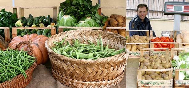 Azienda agricola biodinamica Filippi