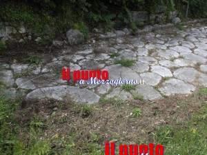 cinghiali-via-latina-05