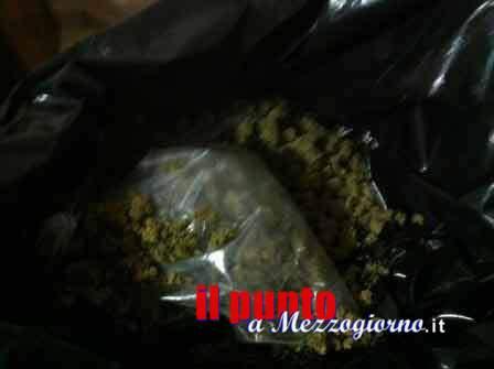Viaggia sull'A1 a Cassino con 51 chili di marijuana, abbandona l'auto e scappa