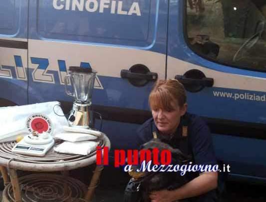 """Controlli antidroga a Cassino, cane poliziotto """"annusa"""" consumatore di hashish"""