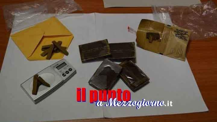 Nasconde la droga nel giardino a San Felice Circeo, i carabinieri la trovano e arrestano il padrone di casa