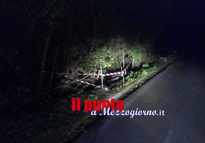 Perde il controllo sulla strada per Montecassino, Mini Cooper abbatte lampione