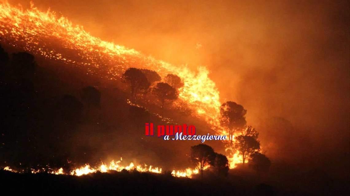 Incendi boschivi nel Cassinate, brucia la montagna a Porchio e a Mignano Montelungo – FOTO E VIDEO