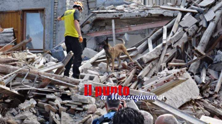 Terremoto Amatrice, Finta onlus per raccogliere fondi pro terremotati
