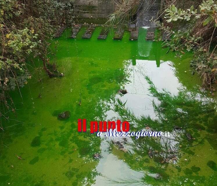 """Acqua verde al """"vascone"""" di Piumarola, residenti preoccupati"""