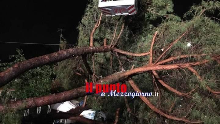 Roma flagellata dal maltempo, allagamenti e alberi caduti. Disagi su tutta la Capitale