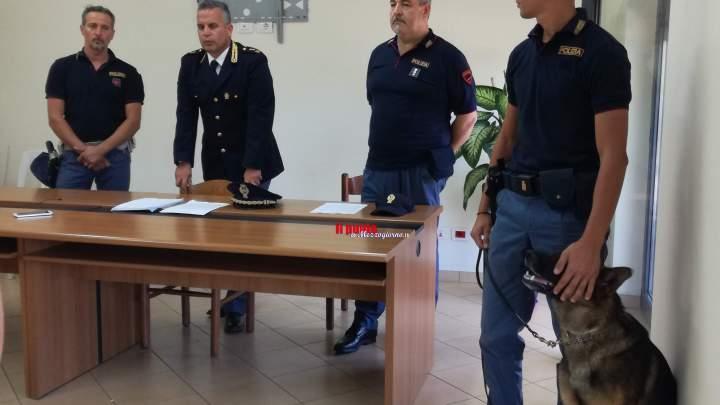 Cassino: Associazione familiare dello spaccio smantellata. Comunicavano con whatsapp e conoscevano targhe ed auto della Polizia