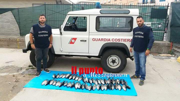 Pesca illegale al tonno rosso, maxi multe a pescatori di Gaeta