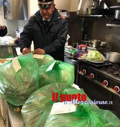Decine di alimenti sequestrati dal Nas in ristoranti di Terracina e Aprilia