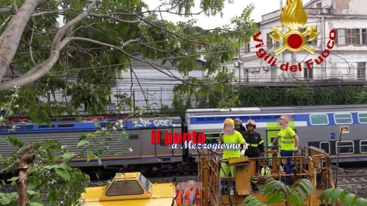 Cade albero sulla rete elettrica della linea ferroviaria tra Ostiense e Tuscolana