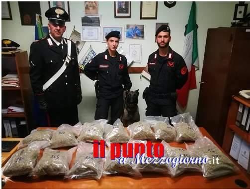 Pusher 31enne con 5,3 kg di marijuana arrestato dai carabinieri per detenzione e spaccio