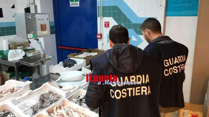 Da Gaeta a Cassino, controlli e sanzioni della Capitaneria di Porto alle pescherie