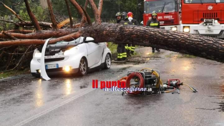 Cade un albero sulla Casilina a Castrocielo, morte due persone di Arce