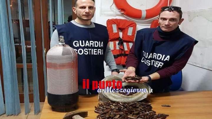 Razzia di datteri di mare, denunciato a Minturno 46enne che ne aveva raccolti 20 chili