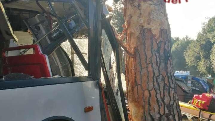 Bus si schianta contro un albero, decine di feriti a Roma