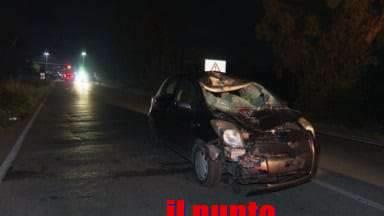 Incidente stradale mortale a Fondi, 47enne investito ed ucciso