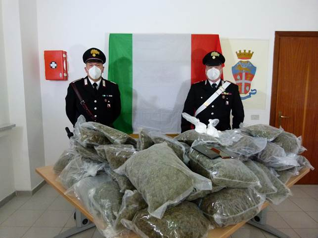 """Serra """"stupefacente"""" a Pratella, coniugi scoperti con 33 chili di droga"""
