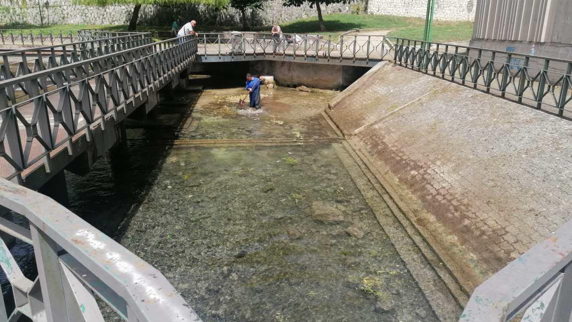 Cassino – Pulite dalla vegetazione e dai rifiuti le sorgenti del Gari