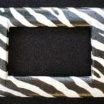 placca-zebrata