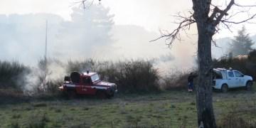 Intervento di Polizia Provinciale, Vigili del Fuoco e Calabria Verde