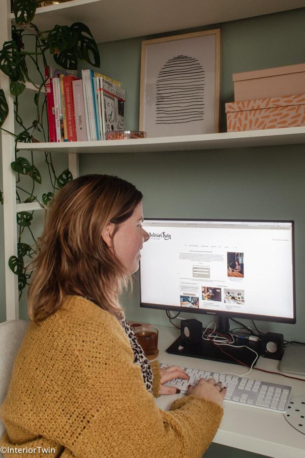 professioneel blogger doelen