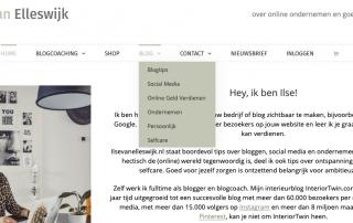 categorieen website wordpress
