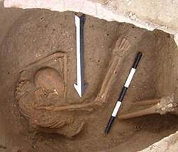 Il sequenziamento del DNA rivela che i Libanesi sono gli antichi Cananei