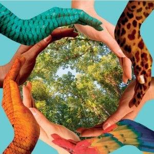 L'evoluzione creatrice di Henri Bergson e la giornata mondiale della Biodiversità