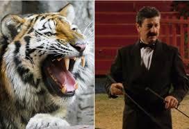 Domatore sbranato dalle tigri: la colpa dell'animale in Heidegger, Kant e Derrida